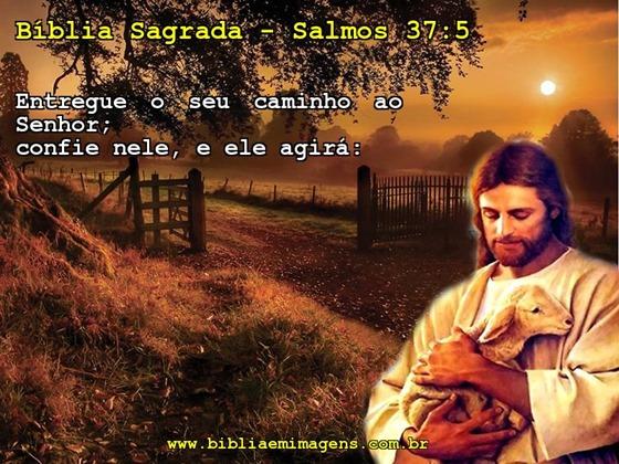 salmos-37-5